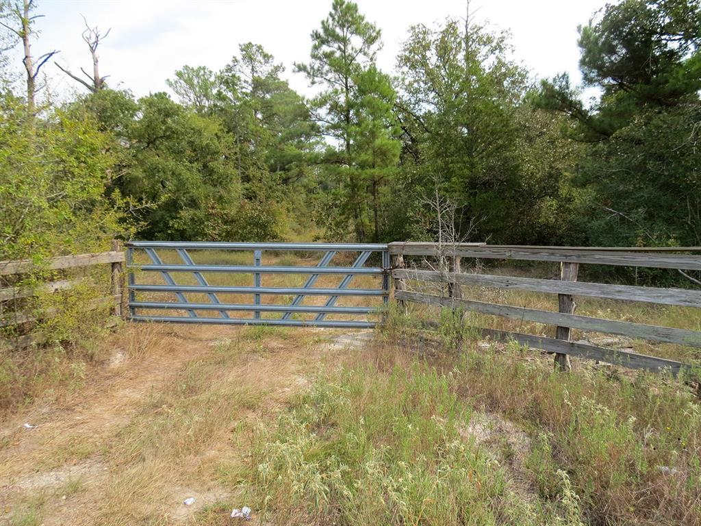 Active   0000 Wood Farm Road Huntsville, Texas 77320 3