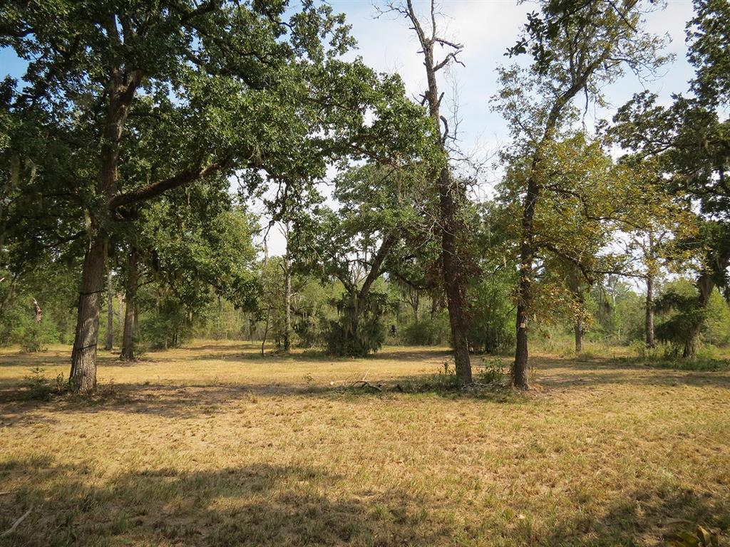 Active   0000 Wood Farm Road Huntsville, Texas 77320 4