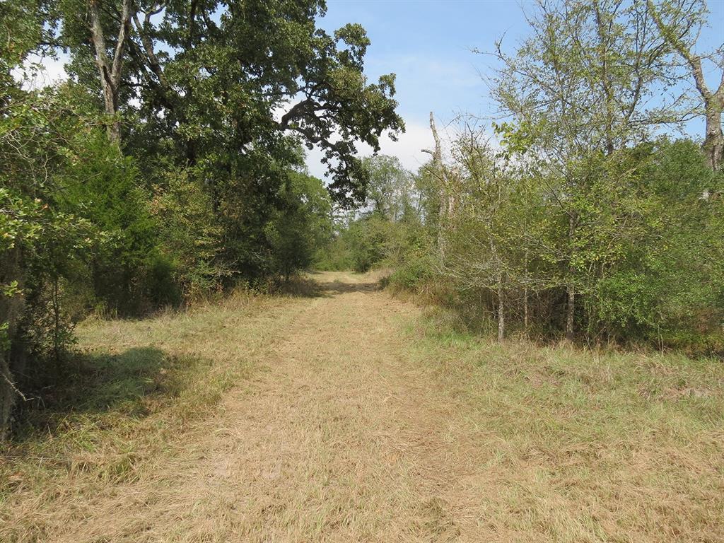 Active   0000 Wood Farm Road Huntsville, Texas 77320 6