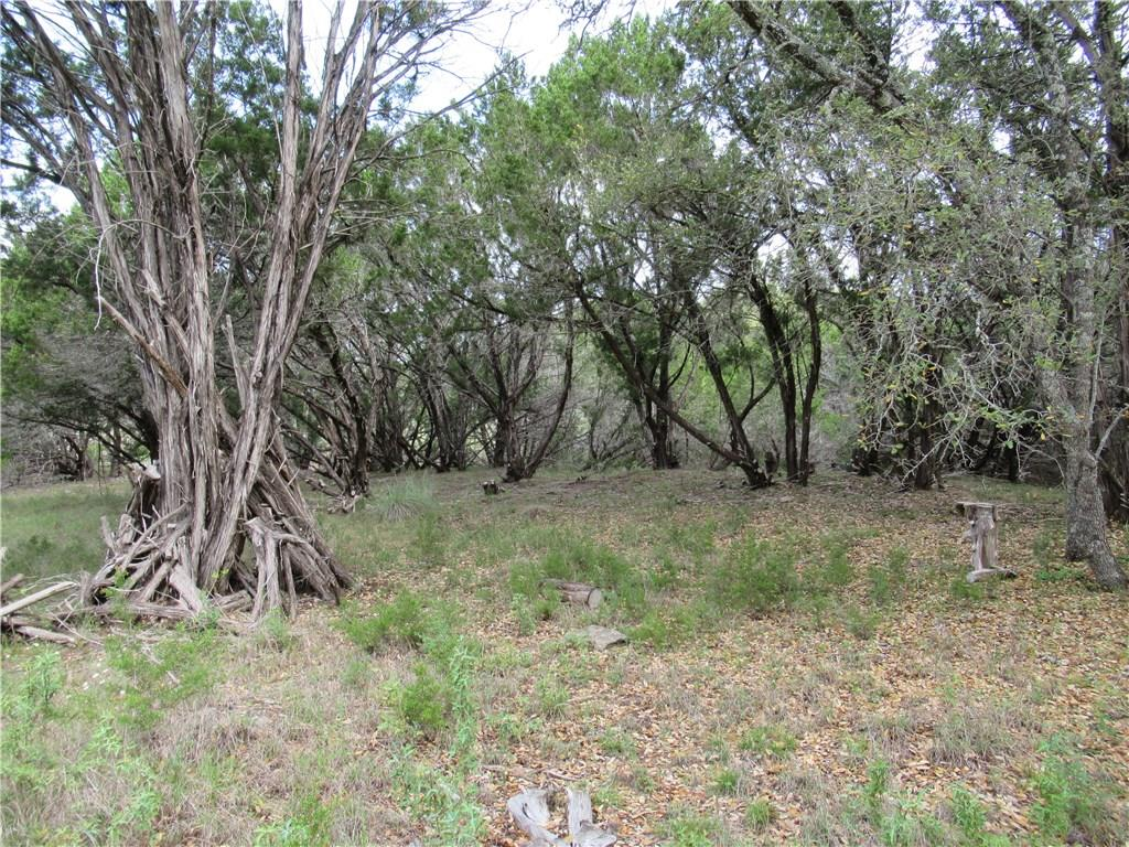 Pending | 2922 Stagecoach Ranch  Loop Dripping Springs, TX 78620 6