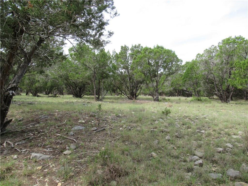 Pending | 2922 Stagecoach Ranch  Loop Dripping Springs, TX 78620 8
