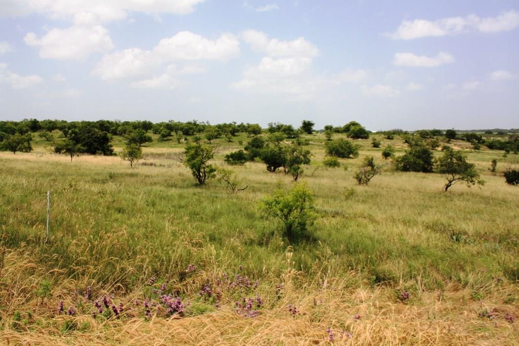 Sold Property | 00 Hawk Wood Court Comanche, Texas 76442 3