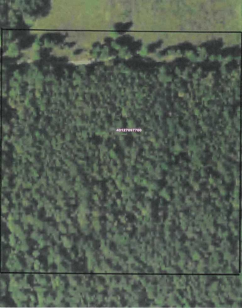 Sold Property | 10 Wooded Acres Antlers, OK 74523 5