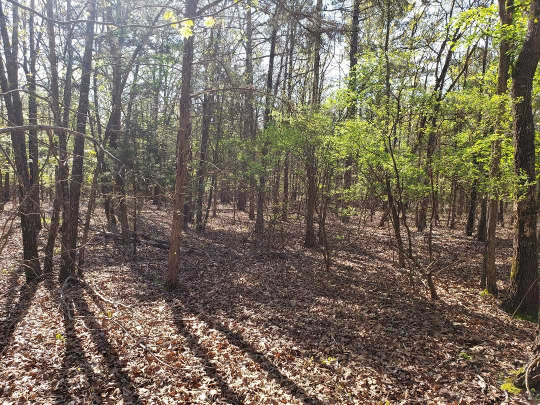 Sold Property | 10 Wooded Acres Antlers, OK 74523 1