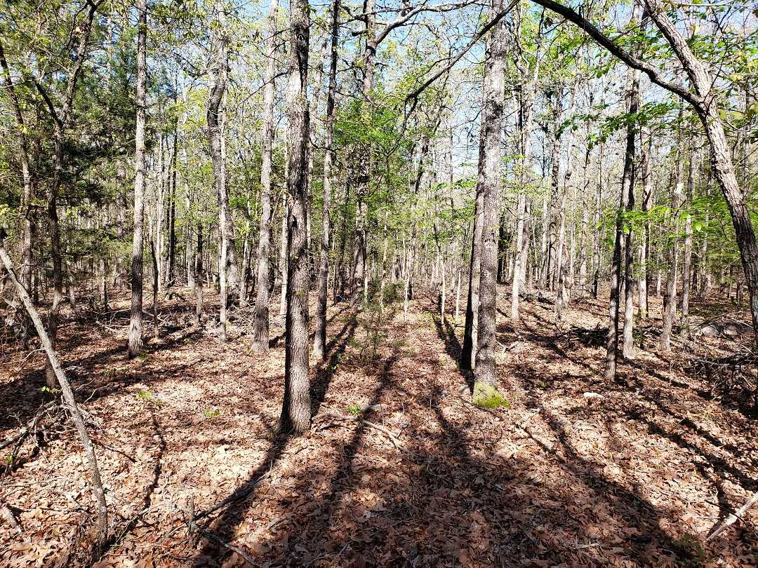 Sold Property | 10 Wooded Acres Antlers, OK 74523 0