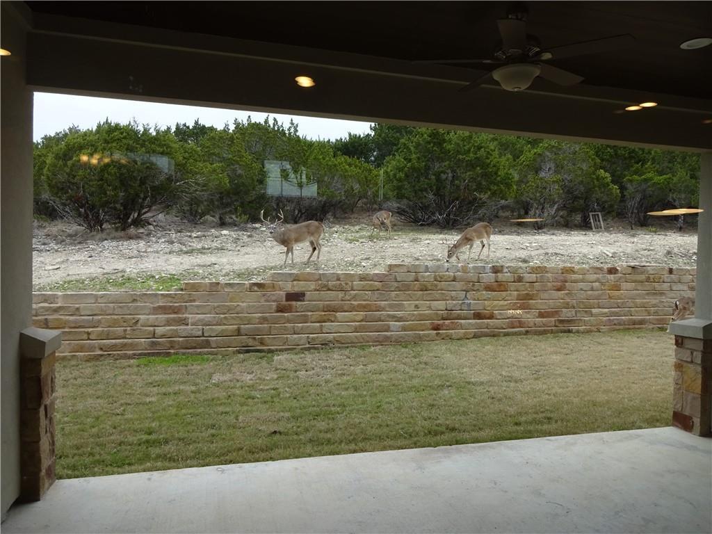 Active | 21208 Oak Dale  DR Lago Vista, TX 78645 35