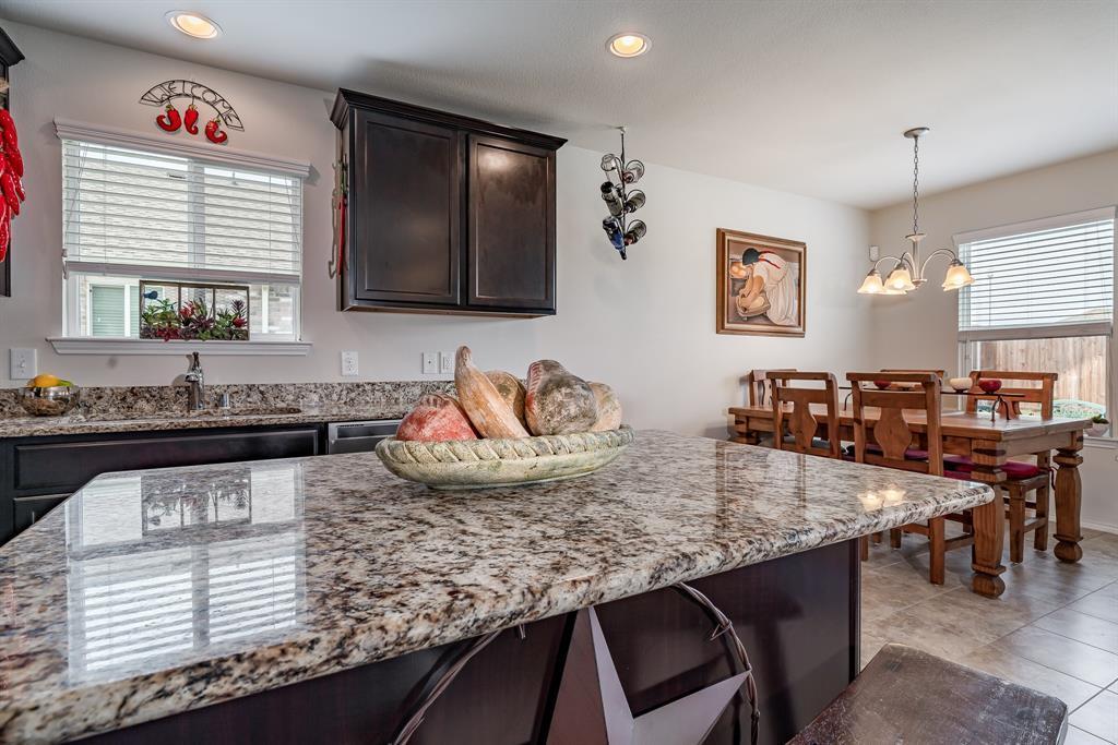 Sold Property | 1609 Megan Creek  Drive Little Elm, TX 75068 20