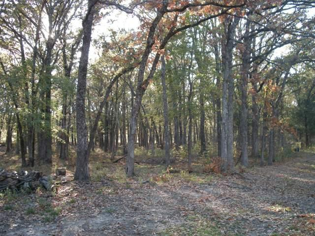 Sold Property   Lot 35 Fox Point Circle Quinlan, Texas 75474 1