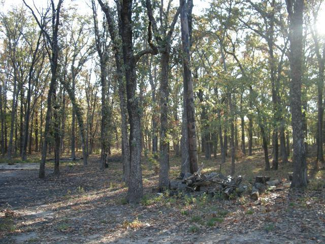 Sold Property   Lot 35 Fox Point Circle Quinlan, Texas 75474 4