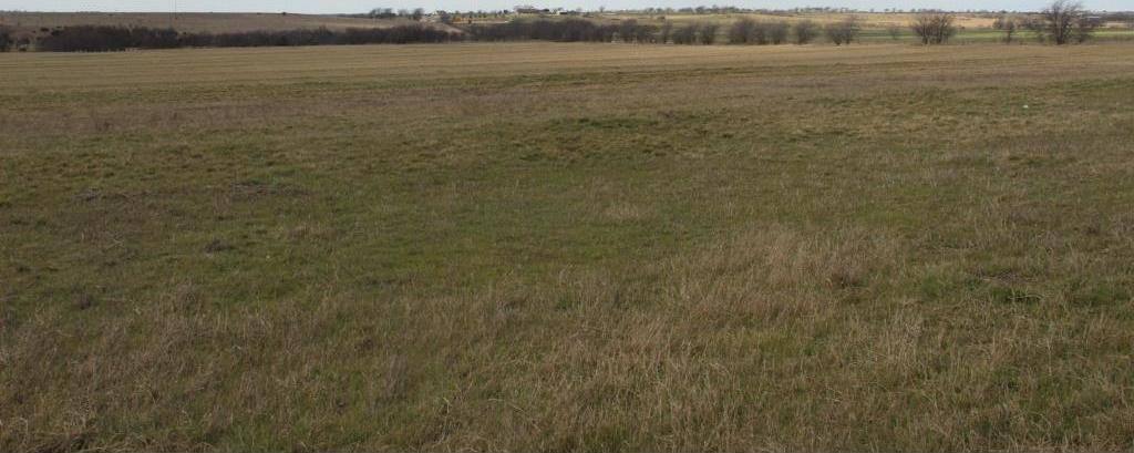 Sold Property   TBD County Road 1123  Cleburne, Texas 76033 4