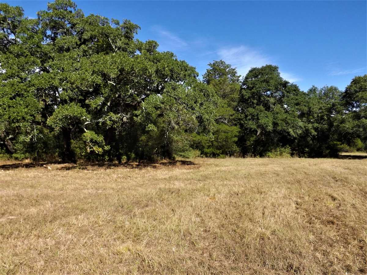 17.5 Acres for Sale in Columbus, TX | 1297-A Frelsburg Rd. Alleyton, TX 78935 6
