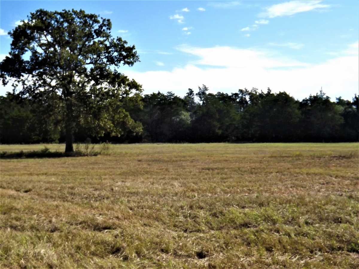 17.5 Acres for Sale in Columbus, TX | 1297-A Frelsburg Rd. Alleyton, TX 78935 8