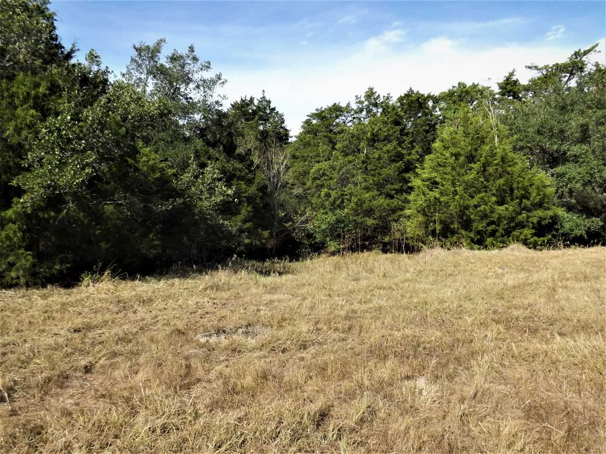 17.5 Acres for Sale in Columbus, TX | 1297-B Frelsburg Rd. Alleyton, TX 77435 4