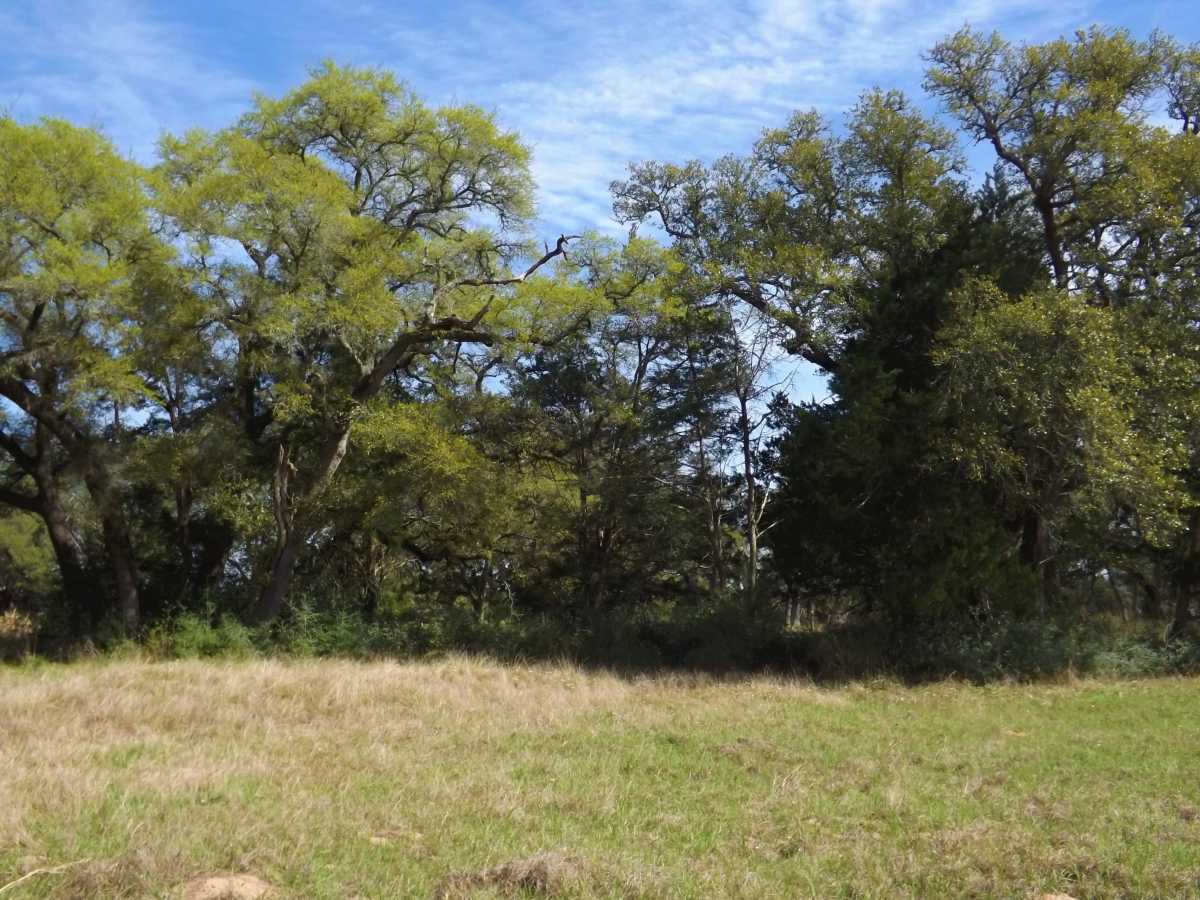 17.5 Acres for Sale in Columbus, TX | 1297-B Frelsburg Rd. Alleyton, TX 77435 9