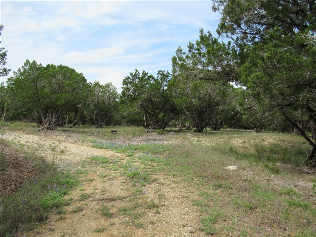 Active Contingent | 2922 Stagecoach Ranch  LOOP Dripping Springs, TX 78620 5