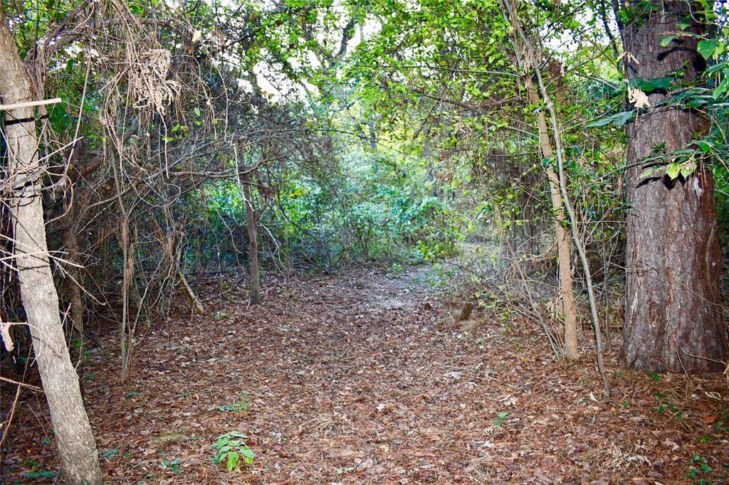Active | 0 County Road 2305 Sulphur Springs, TX 75482 5