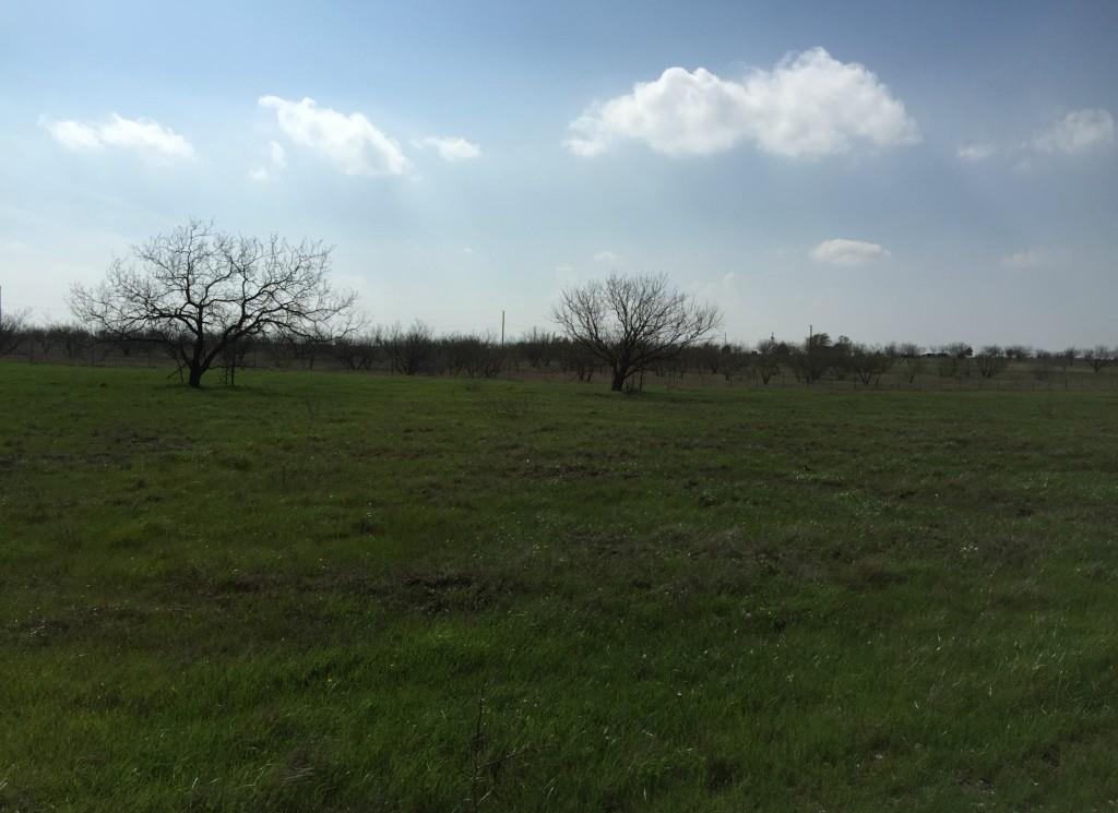 Sold Property | 223 Miller Road Midlothian, TX 76065 10