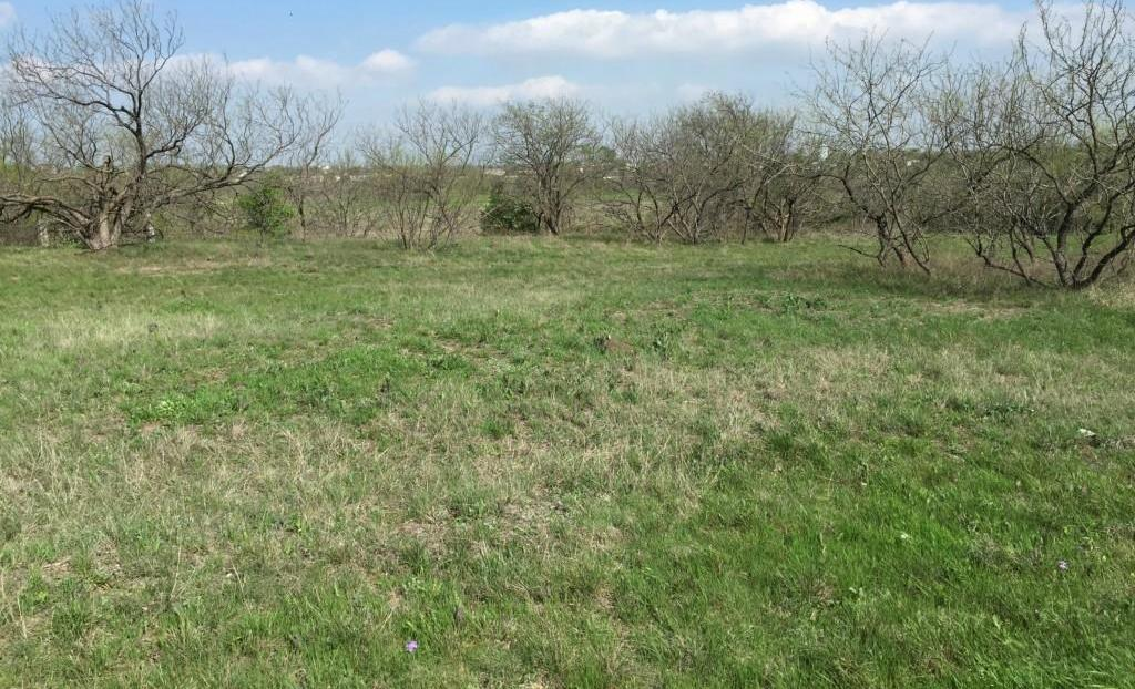 Sold Property | 223 Miller Road Midlothian, TX 76065 7