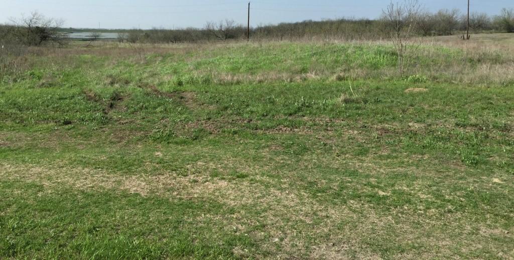 Sold Property | 00 Miller Road Midlothian, Texas 76065 1