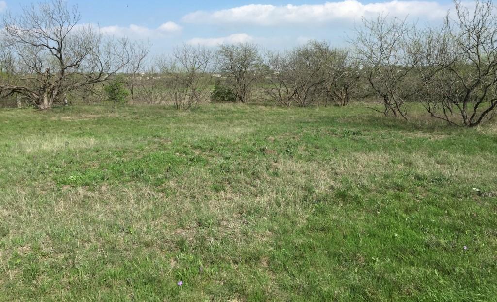 Sold Property | 00 Miller Road Midlothian, Texas 76065 6
