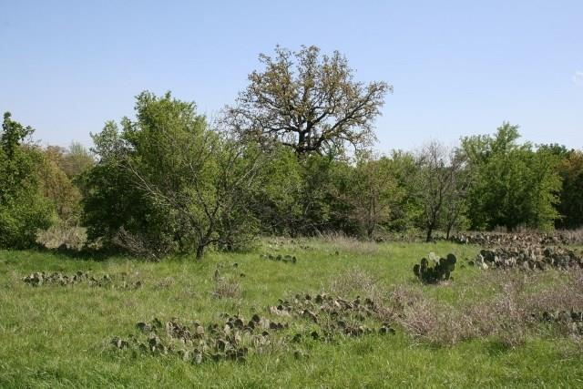 Sold Property   000 Brazos Heights Road Mineral Wells, Texas 76067 19