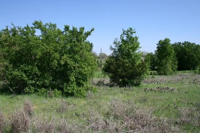 Sold Property   000 Brazos Heights Road Mineral Wells, Texas 76067 20