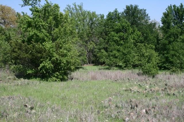 Sold Property   000 Brazos Heights Road Mineral Wells, Texas 76067 22