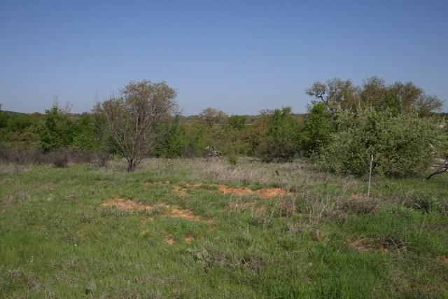 Sold Property   000 Brazos Heights Road Mineral Wells, Texas 76067 2