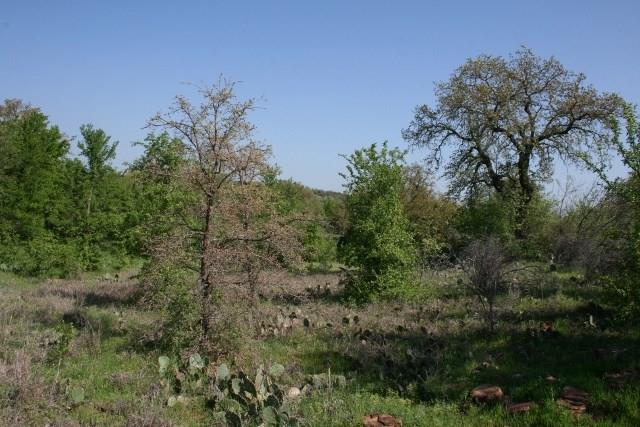 Sold Property   000 Brazos Heights Road Mineral Wells, Texas 76067 4