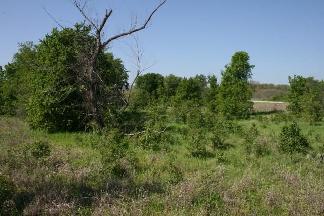 Sold Property   000 Brazos Heights Road Mineral Wells, Texas 76067 8
