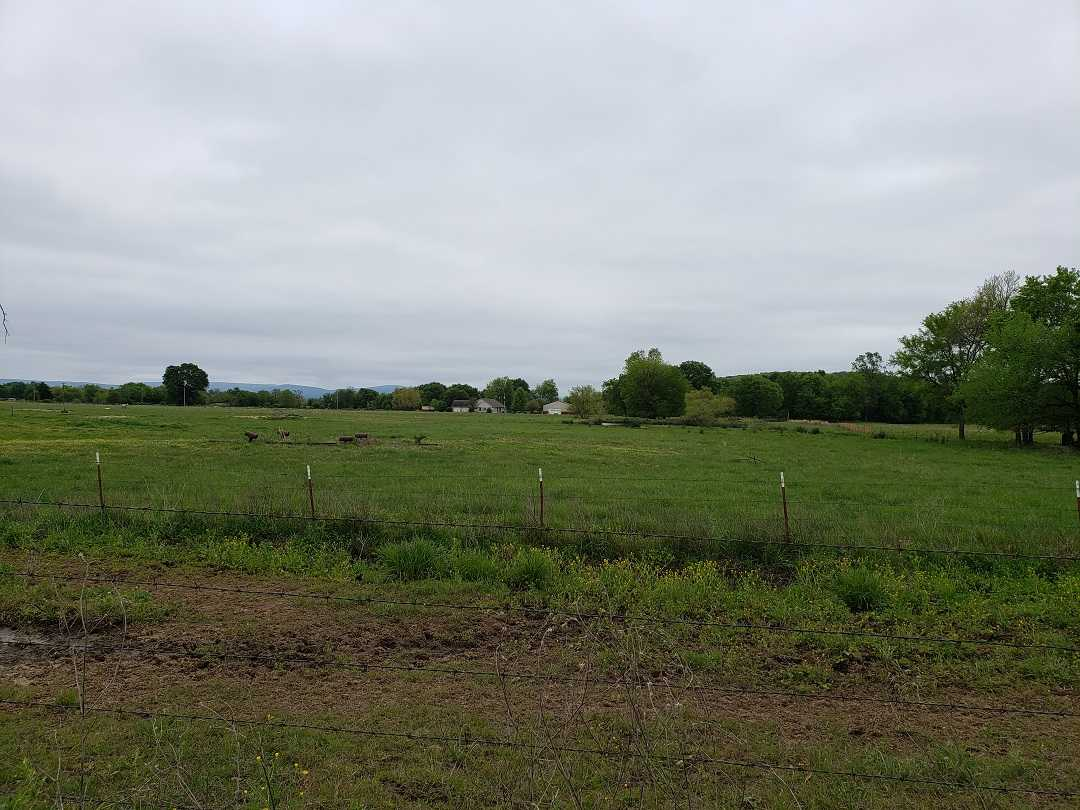 Active | HOME, SHOP AND UP TO 490.5 ACRES Stigler , OK 74462 8