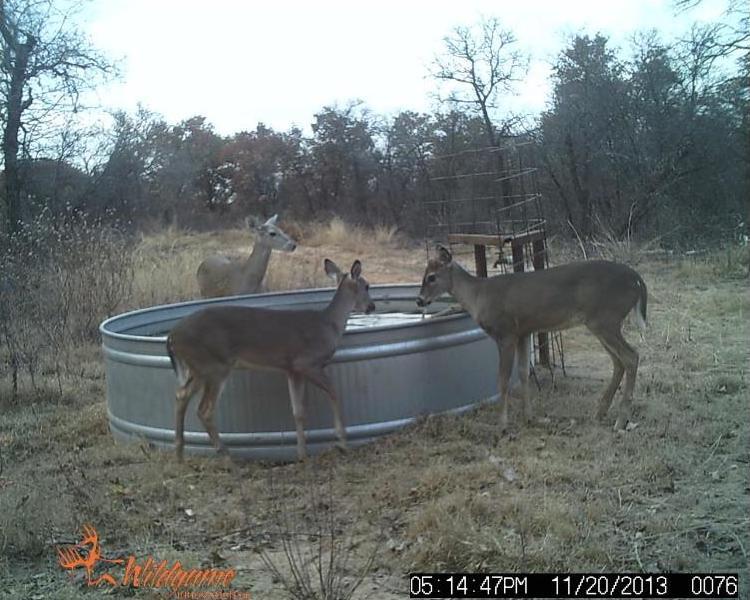 Pending | TBD F.M. 3326  Hawley, TX 79525 2