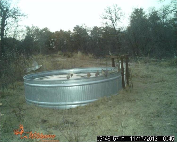 Pending | TBD F.M. 3326  Hawley, TX 79525 4