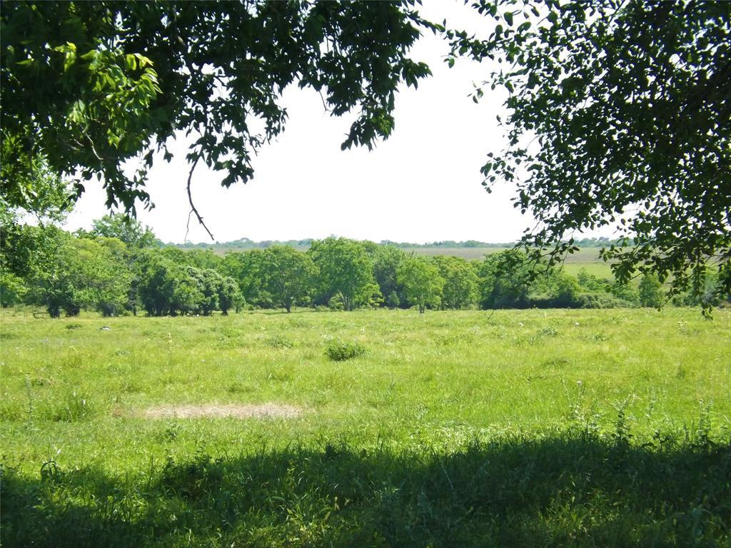 Country Living in Cat Spring on 31+ acres, Farm House.    5677 US Hwy 90 Cat Spring, TX 78933 3