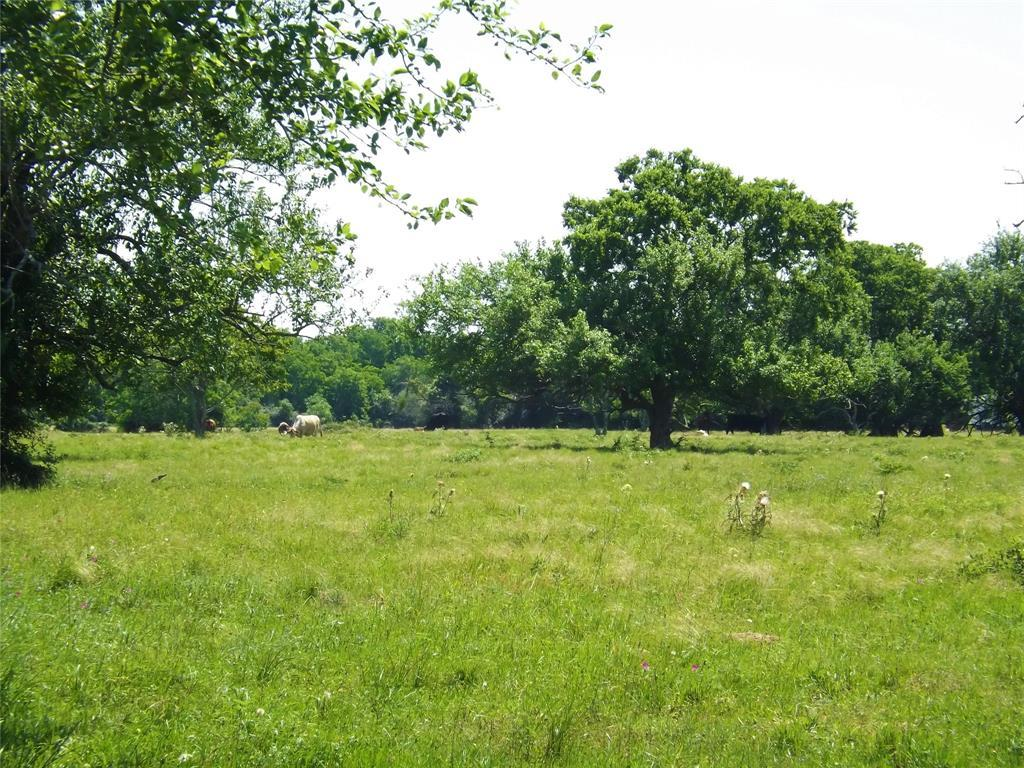 Country Living in Cat Spring on 31+ acres, Farm House.    5677 US Hwy 90 Cat Spring, TX 78933 4