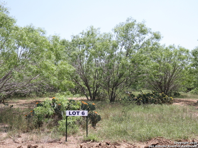 Active | 3034 Atascosa County Road 101 Lot 6 Floresville, TX 78114 2