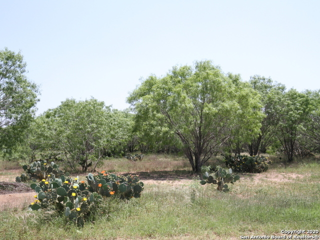 Active | 3034 Atascosa County Road 101 Lot 6 Floresville, TX 78114 3