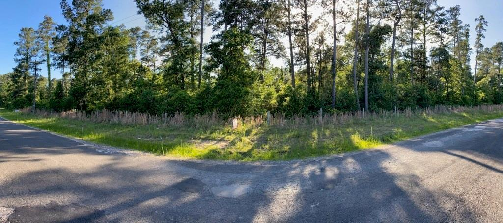 Pending | LT 63 Clark Road Waller, Texas 77484 0