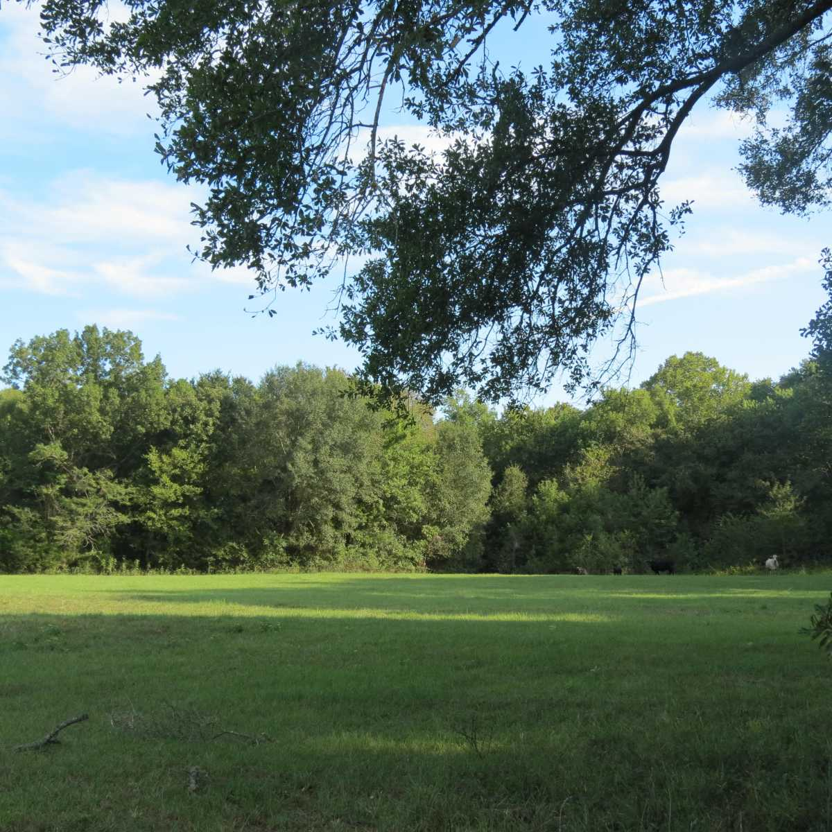 Pending | 4129 Prairie Pond Rd Moyers, OK 74557 75