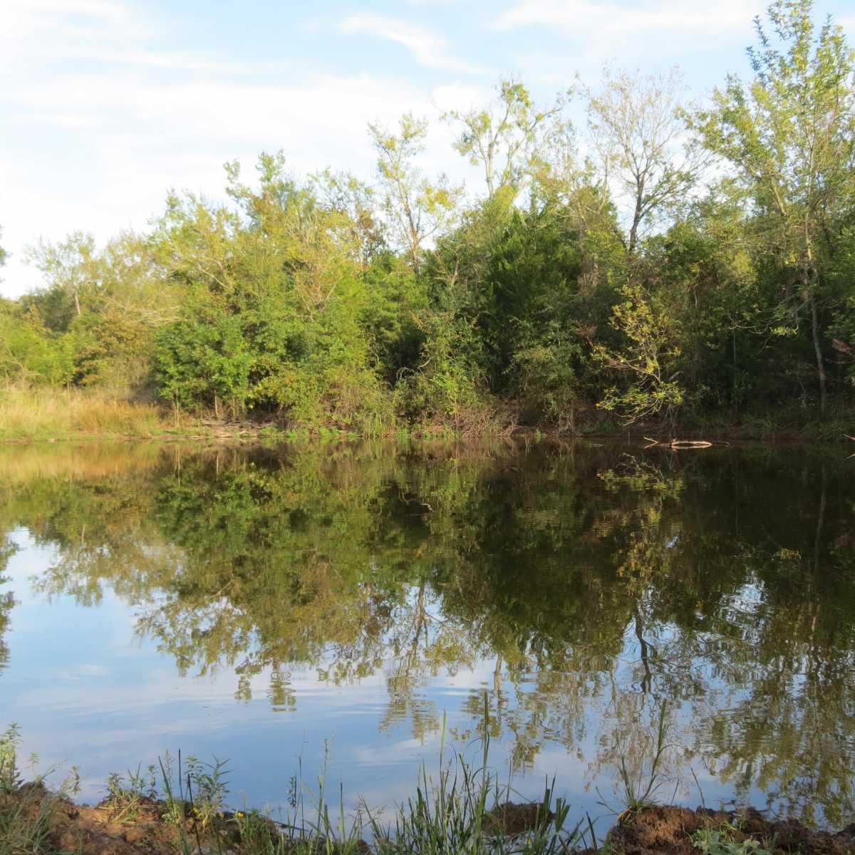 Pending | 4129 Prairie Pond Rd Moyers, OK 74557 77