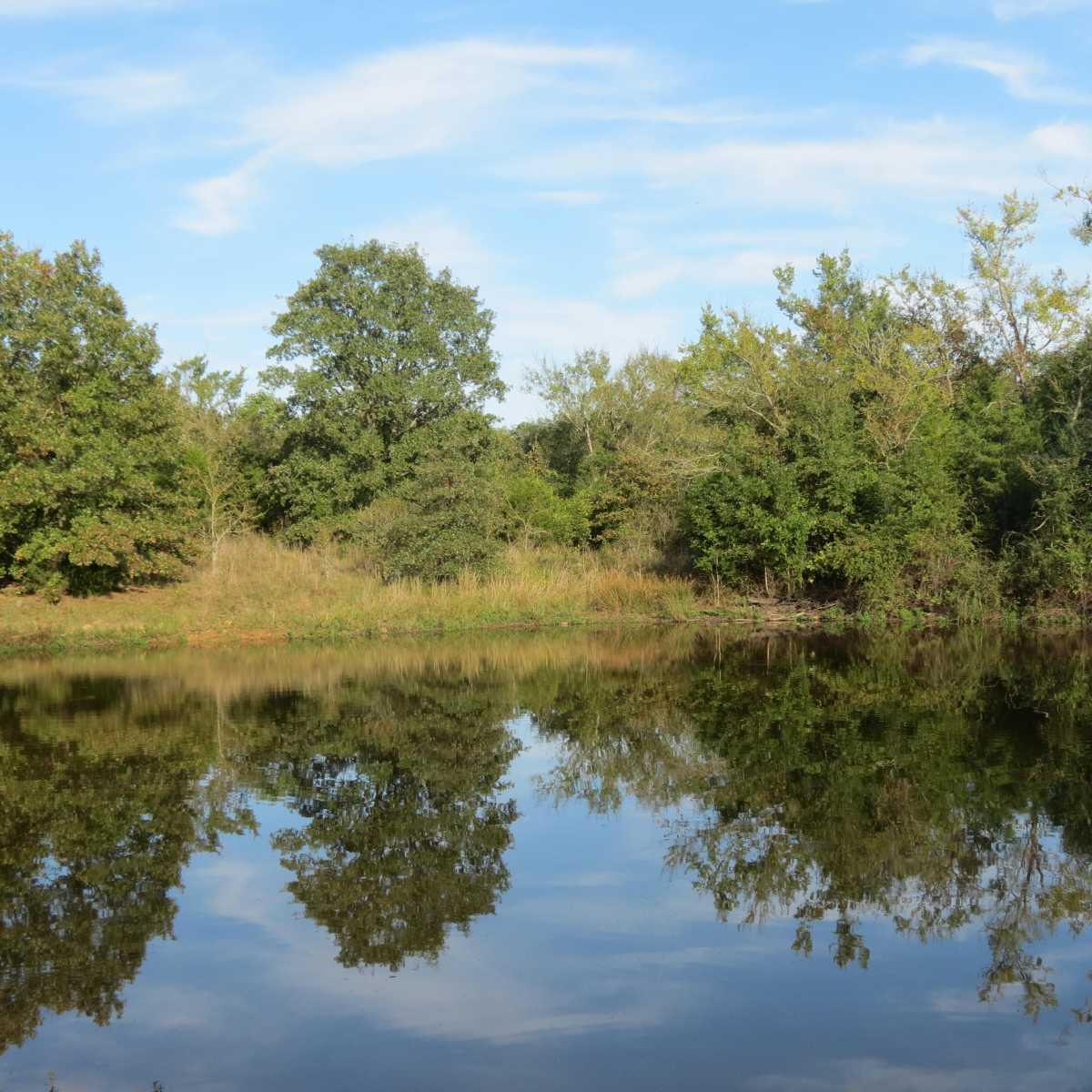 Pending | 4129 Prairie Pond Rd Moyers, OK 74557 78