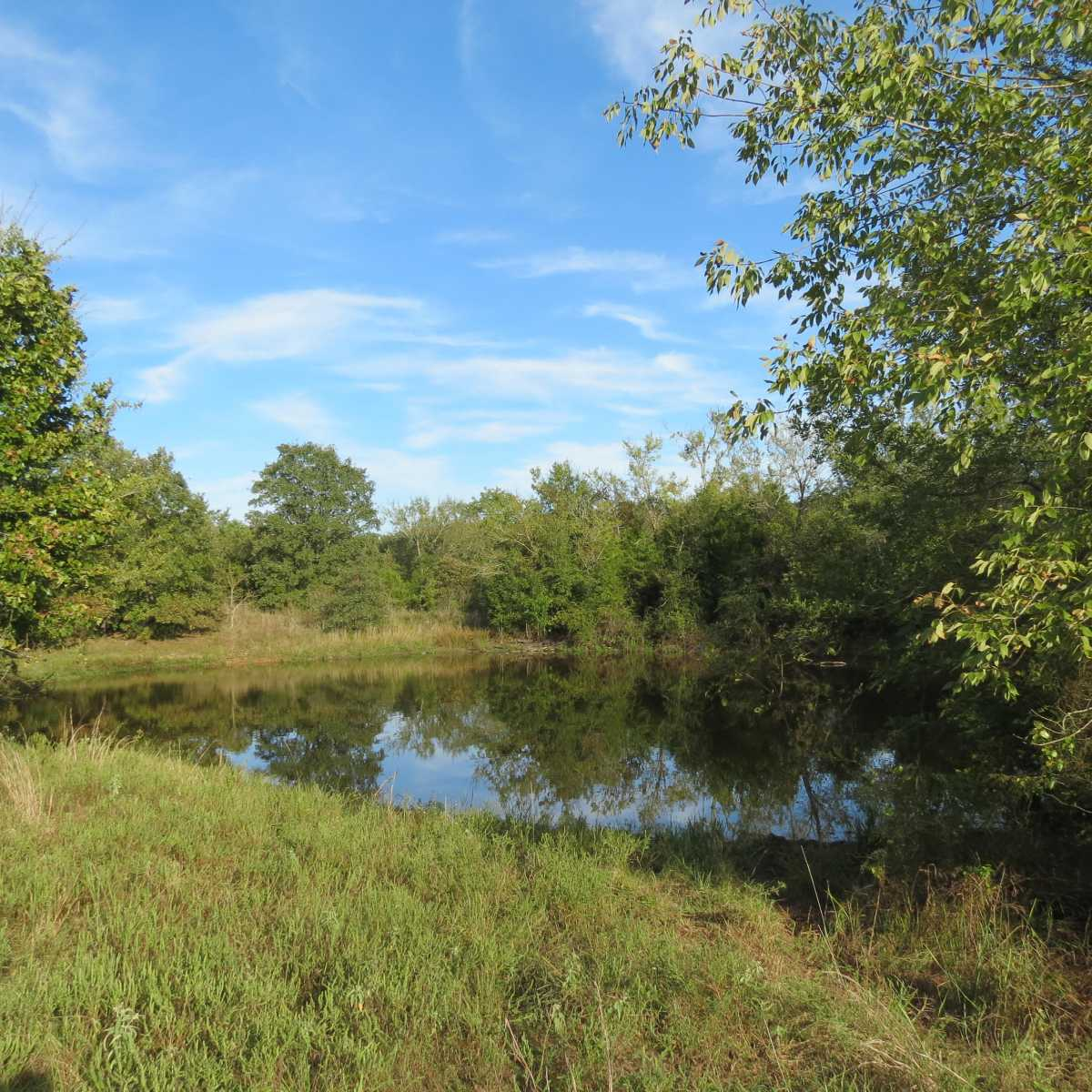 Active | 4129 Prairie Pond Rd Moyers, OK 74557 118