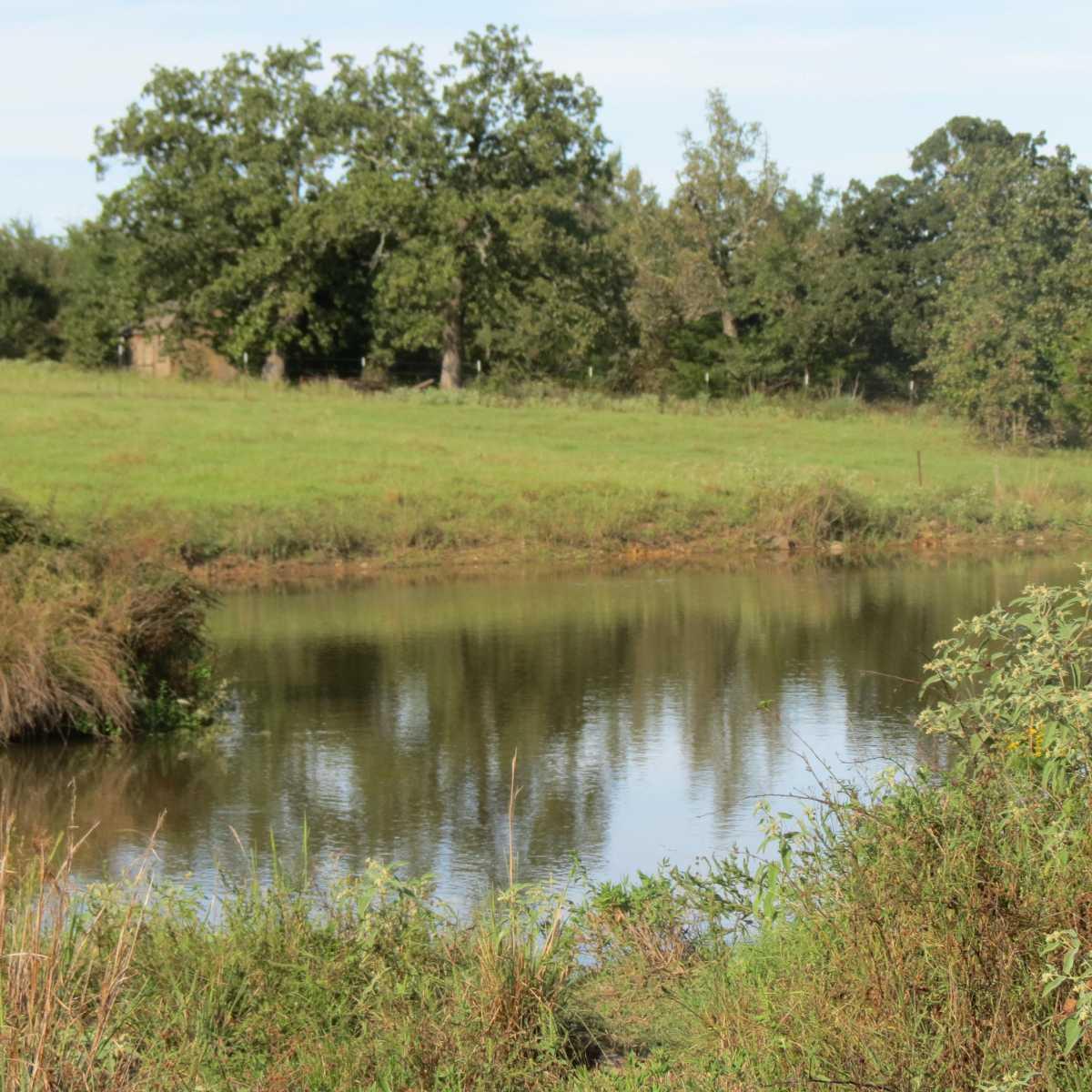 Active | 4129 Prairie Pond Rd Moyers, OK 74557 56