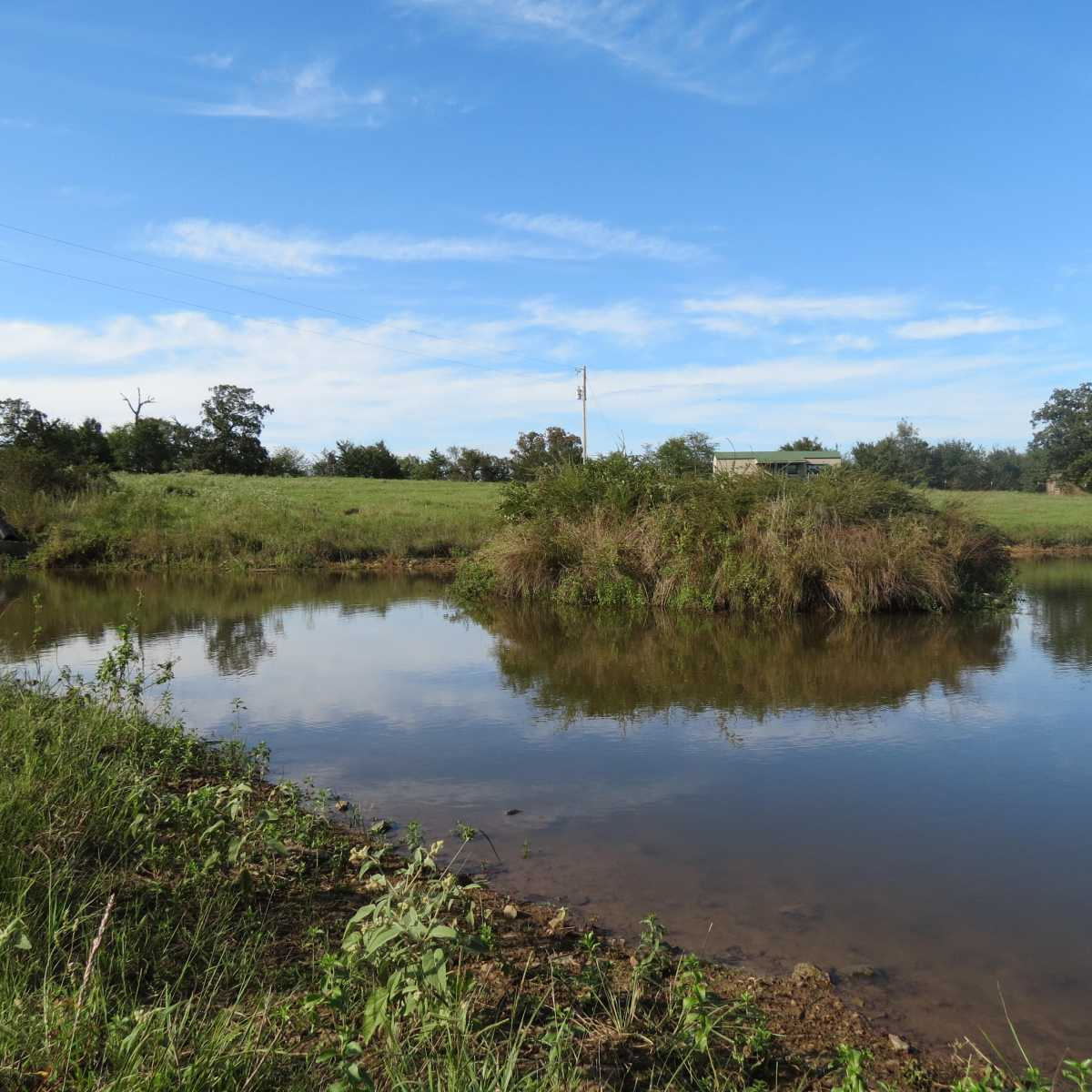 Active | 4129 Prairie Pond Rd Moyers, OK 74557 58