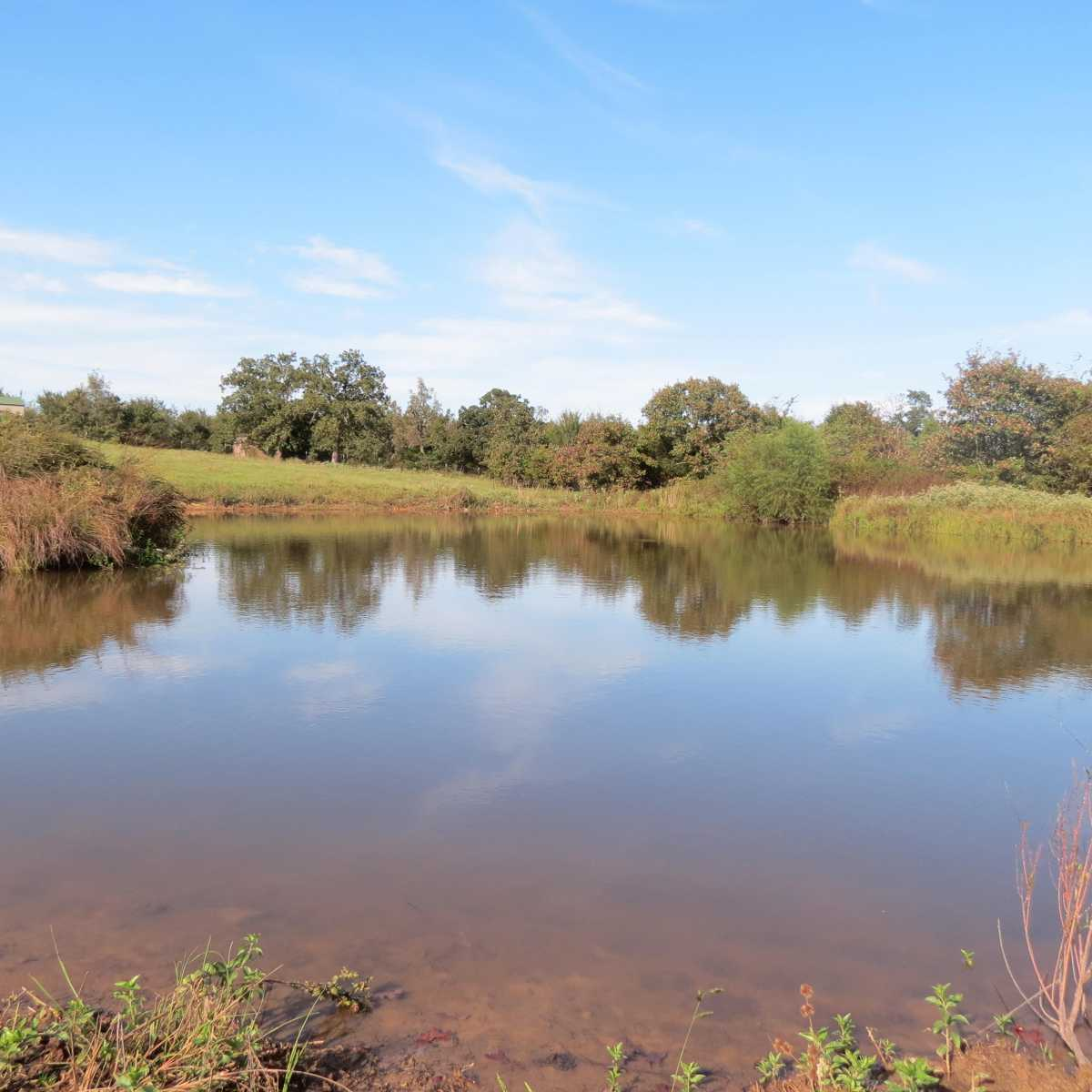 Pending | 4129 Prairie Pond Rd Moyers, OK 74557 42