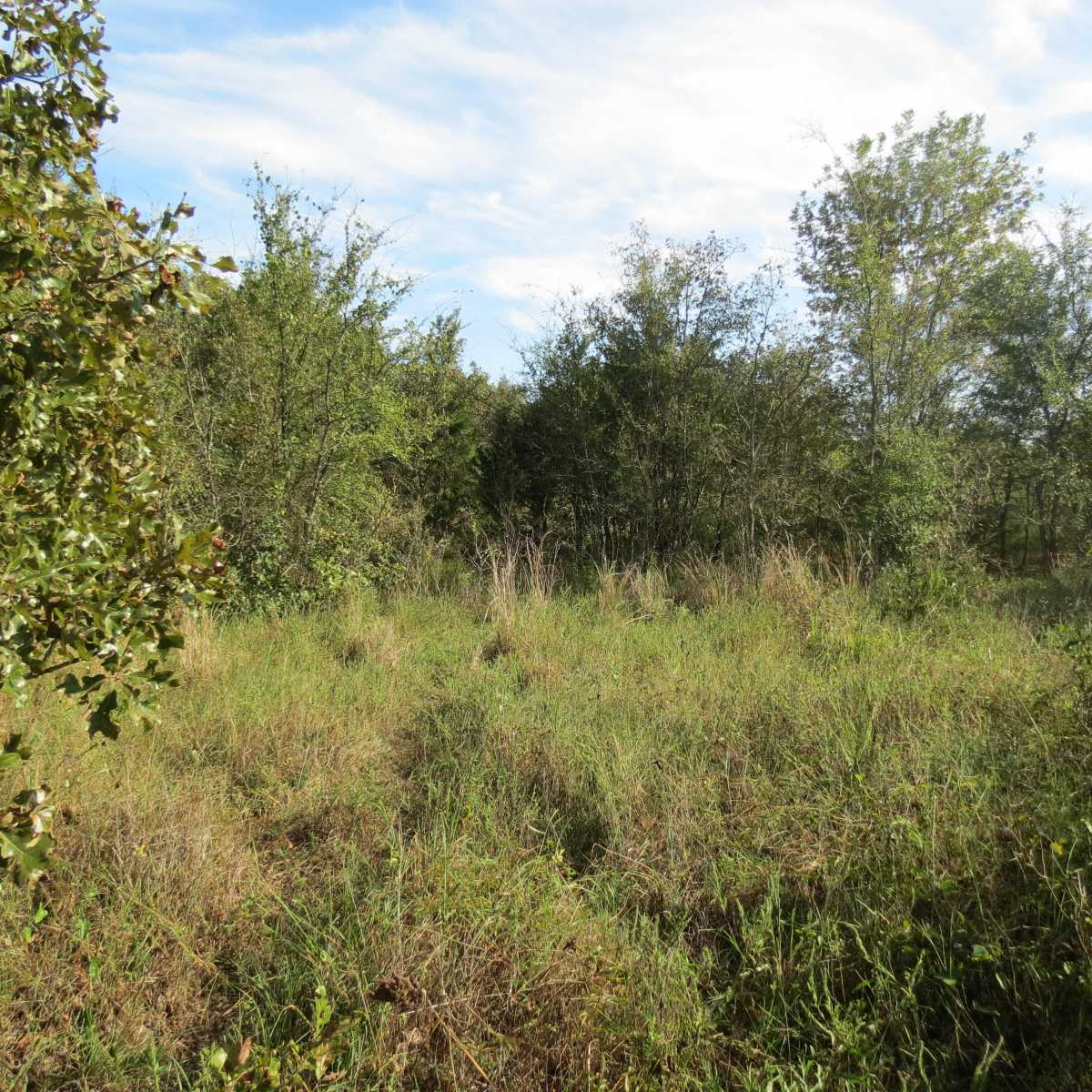 Active | 4129 Prairie Pond Rd Moyers, OK 74557 63