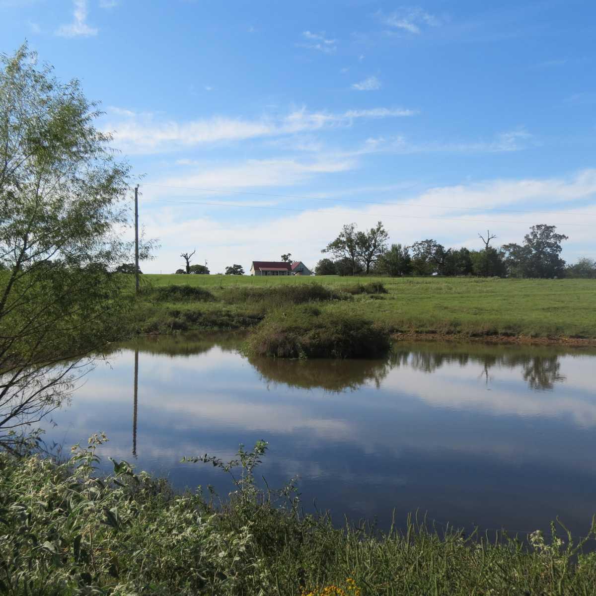 Active | 4129 Prairie Pond Rd Moyers, OK 74557 64