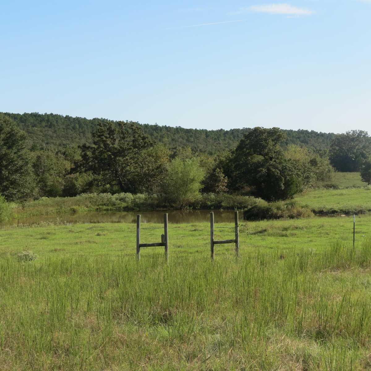 Pending | 4129 Prairie Pond Rd Moyers, OK 74557 58