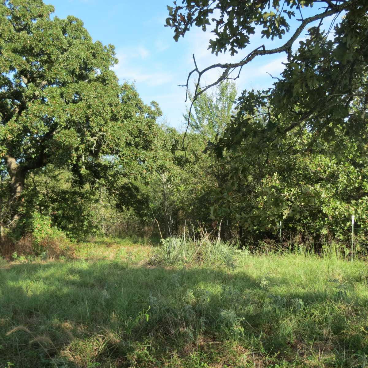 Pending | 4129 Prairie Pond Rd Moyers, OK 74557 72