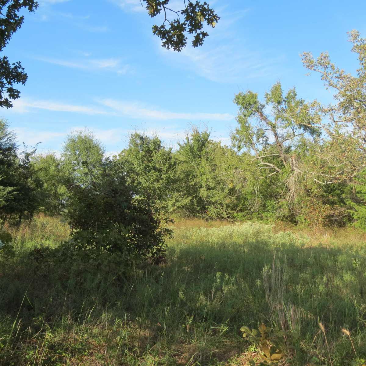 Pending | 4129 Prairie Pond Rd Moyers, OK 74557 73